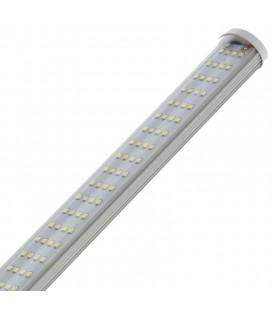 T LED 26 W 6500 K CROISSANCE SECRET JARDIN