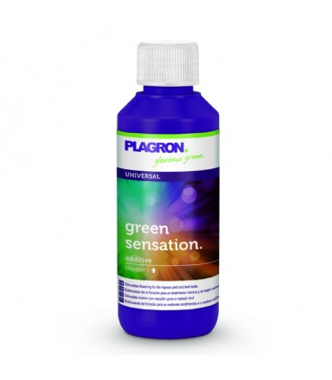 GREEN SENSATION 100 ml