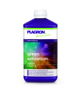 GREEN SENSATION 500 ml
