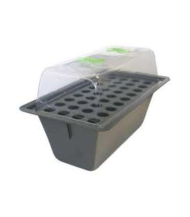 X-STREAM 40 PLANTS SYSTEME PROPAGATION