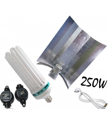 PACK COMPLET ECO CFL 250 WATTS CROISANCE