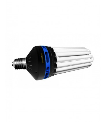 CFL 300 WATT